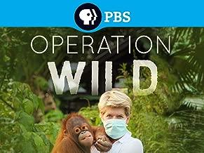 Best operation wild episodes Reviews