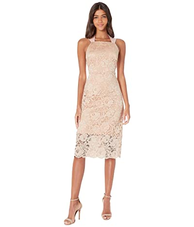 Sam Edelman Lace Thick Strap Midi Dress (Petal Pink) Women