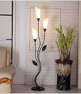Fashion Floor Lamp Living Room Bedroom Simple Iron Art Decorative Lights (Color : Black)