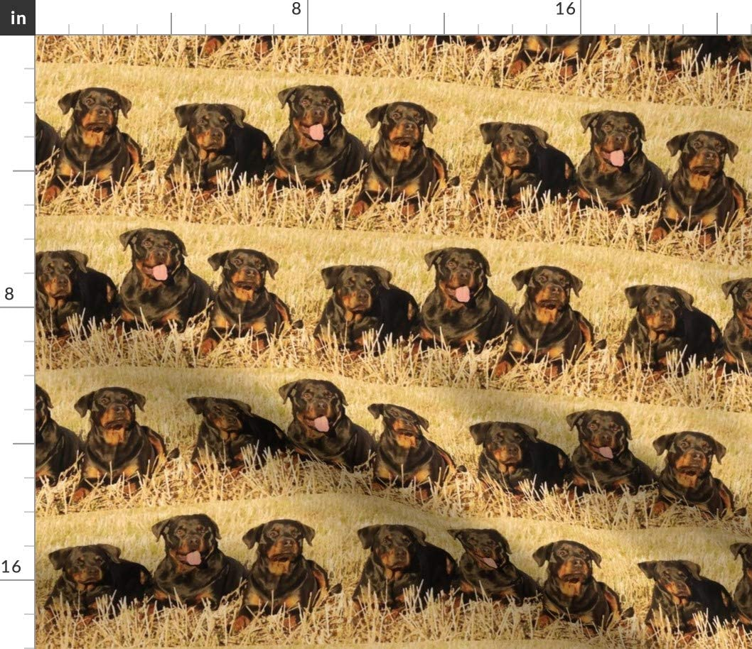 Spoonflower Fabric - Rottweilers Grass Earth Dogs Animals Canine Max 65% Long-awaited OFF