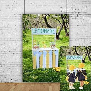 Best del's lemonade cart Reviews