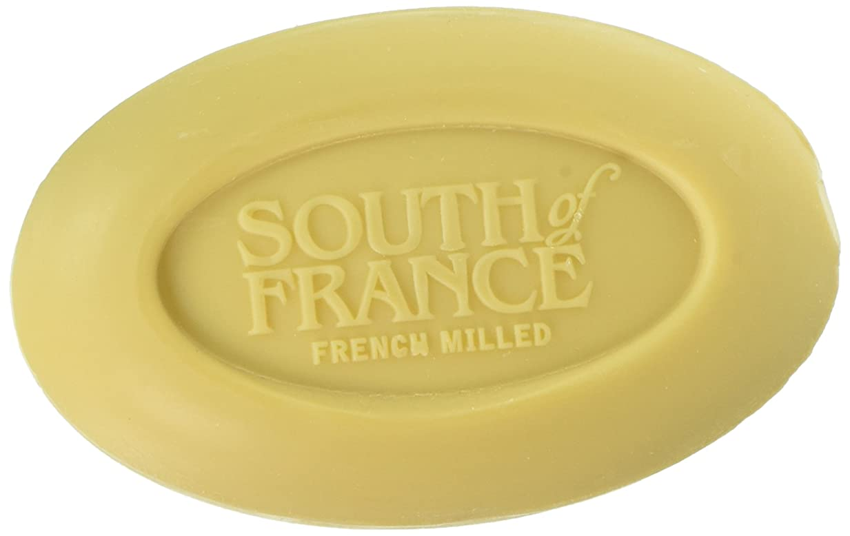 不当クーポン暴力的なSouth of France - フランスの製粉された野菜棒石鹸レモンVerbena - 6ポンド