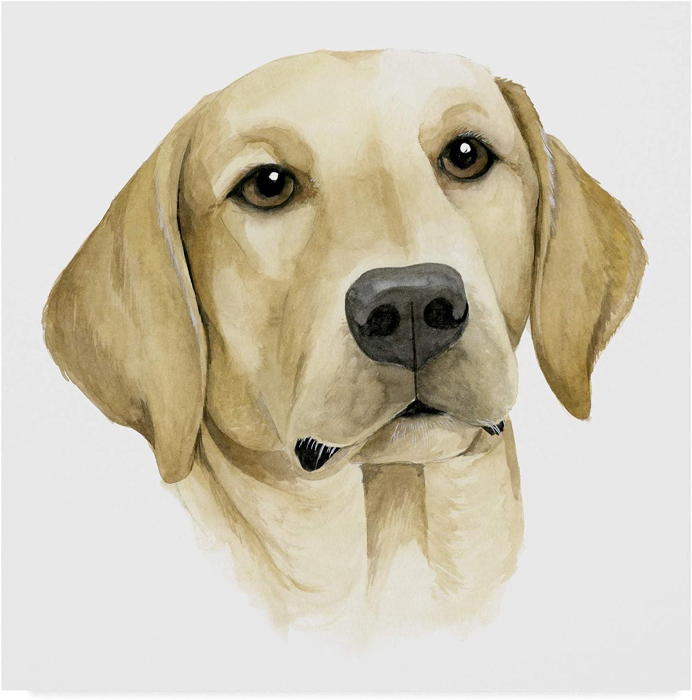 Trademark Fine Art Humans Best Friend I by Grace Popp, 14x14