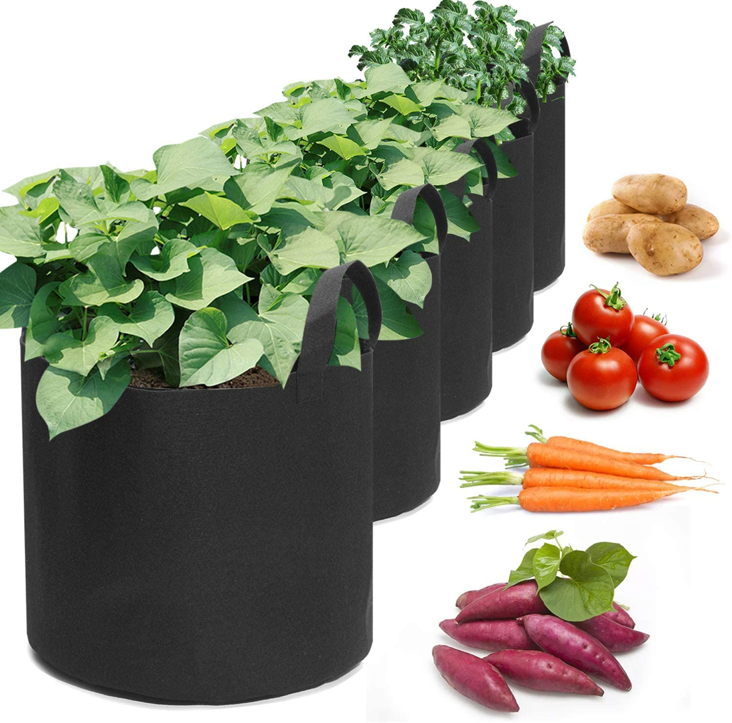 king do way Vegetable Grow Bags,5 Pack Plant Grow Bags Breathable Garden Growing Bag Planting Tomato Fabric Pots Garden Planter Container with Strap Handles for Home,Potato,Carrot Planter Bags 3Gallon