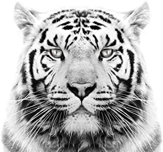 White Tiger Edible Icing Image for 6 inch Round Cake