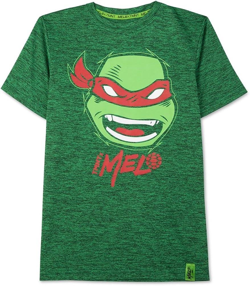 Nickelodeon Boys TMNT Raphael Graphic T-Shirt, Green, XL (20)