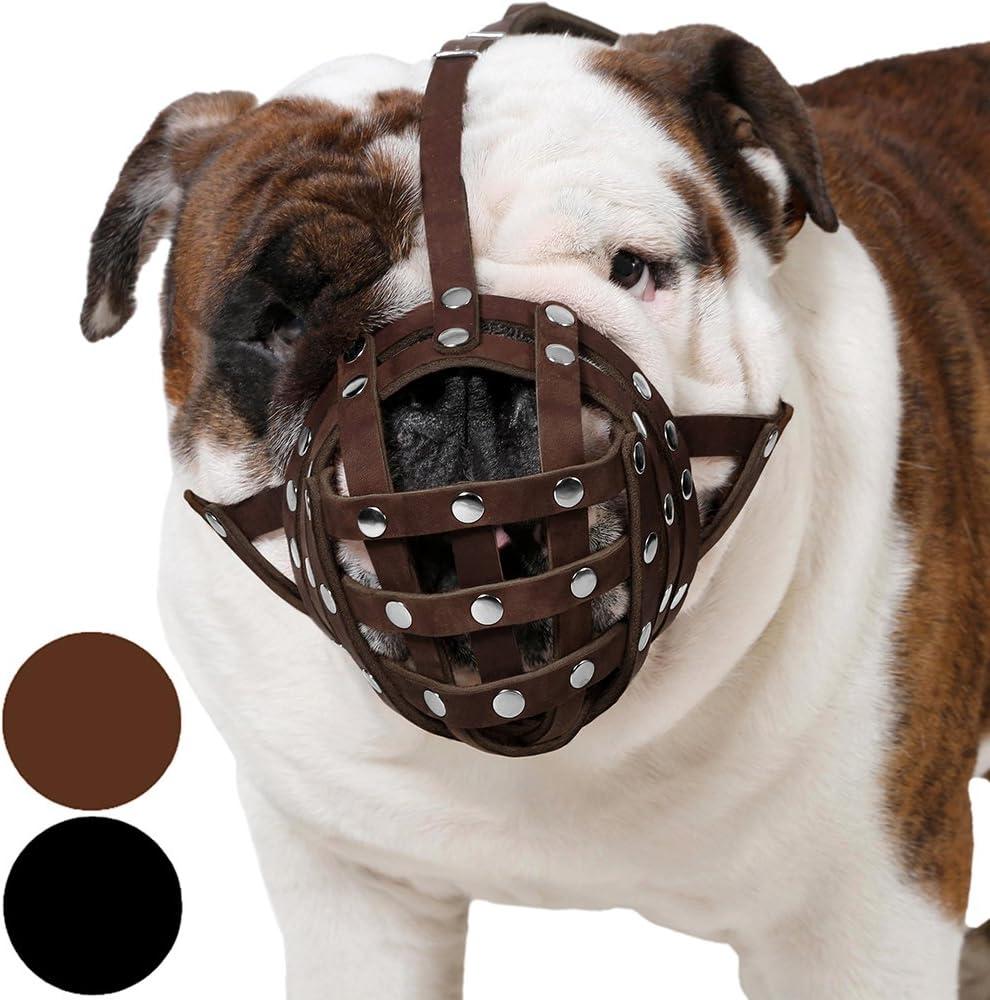 CollarDirect Basket Dog Muzzle for Bulldog Las Vegas Mall Dealing full price reduction Boxer English Ameri
