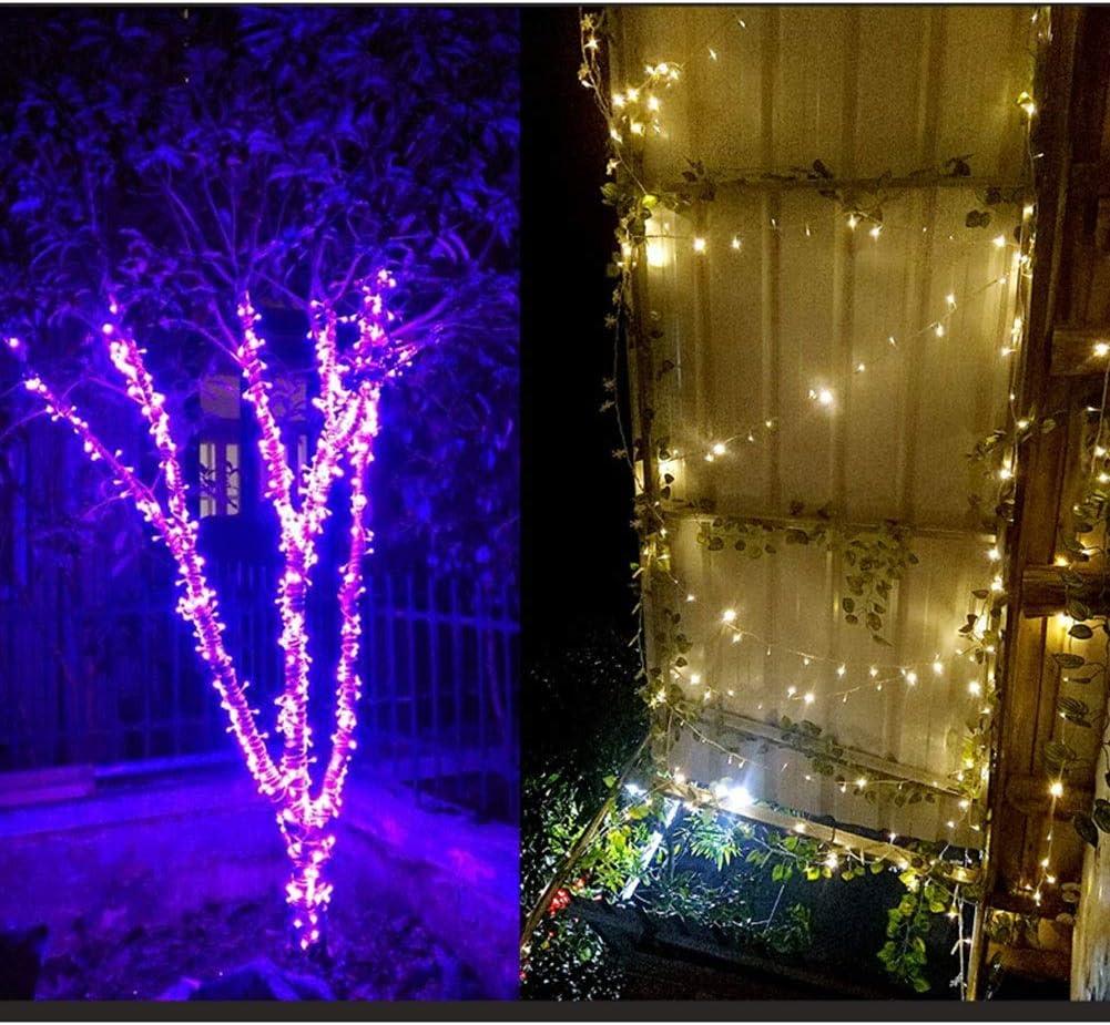 OUYANGLED Führte Lichterketten Dekorative Fairy 8 Modi Wasserdicht Lichterketten For Party Wohnzimmer Schlafzimmer Terrasse Garten Christma (Color : Pink-100m.800LEDs) Green-300m.3000leds