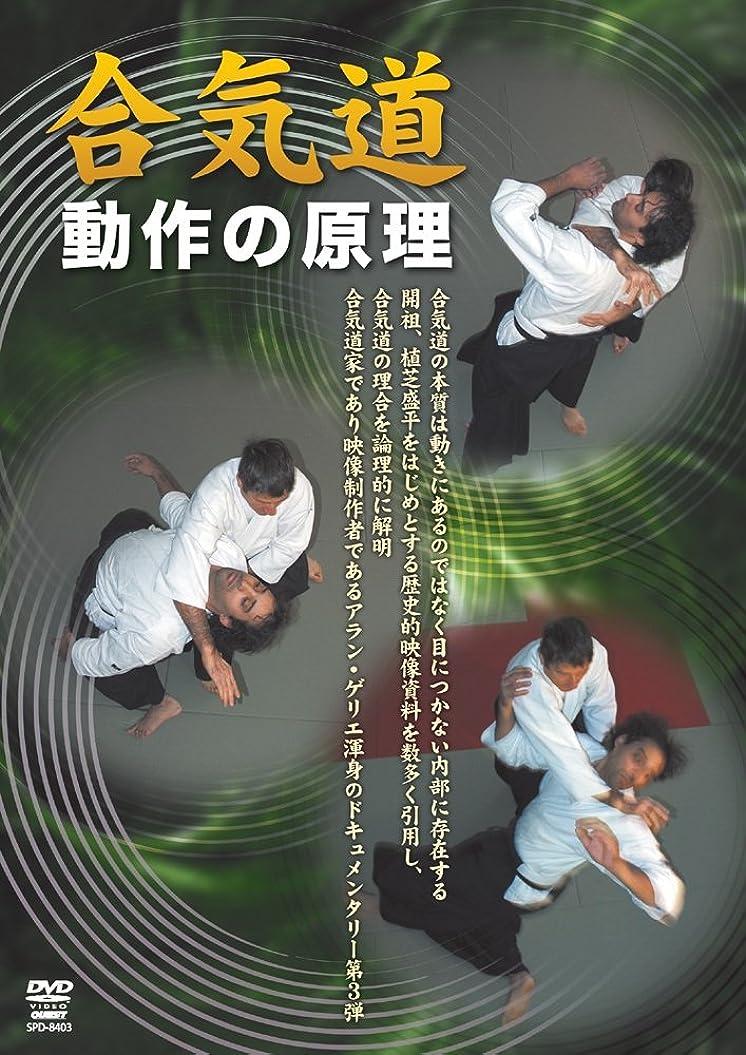 残るかもしれない無駄合気道 動作の原理(仮) [DVD]