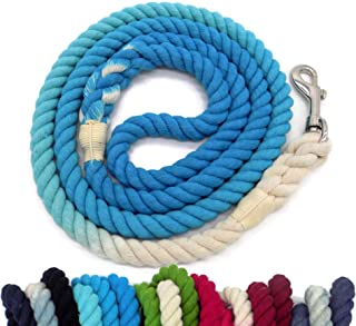 ombre dog leash