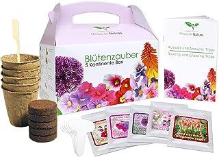 Magic of Nature Geschenk Anzuchtset - Blütenzauber 5 Kontinente Box - zum Selberzüchten