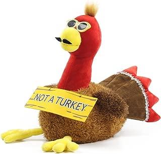 Nika International Thanksgiving Coco Animated Talking Stuffed Plush Toy