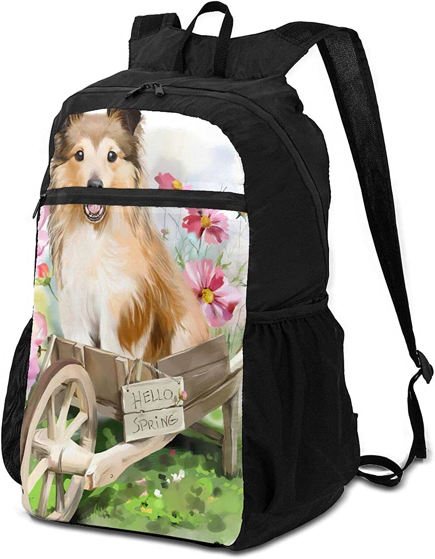Dog Pet Animal Limited price sale Cartoon Cute Travel Backpack 35% OFF Folding Stroller Com