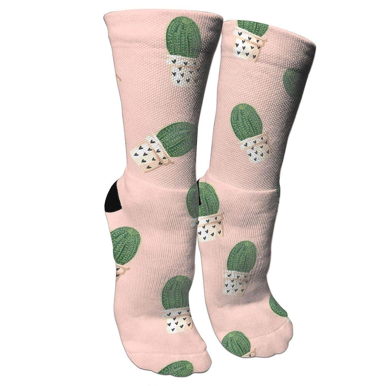 靴下 抗菌防臭 ソックス サボテンアスレチックスポーツソックス、旅行&フライトソックス、塗装アートファニーソックス30 cmロング靴下