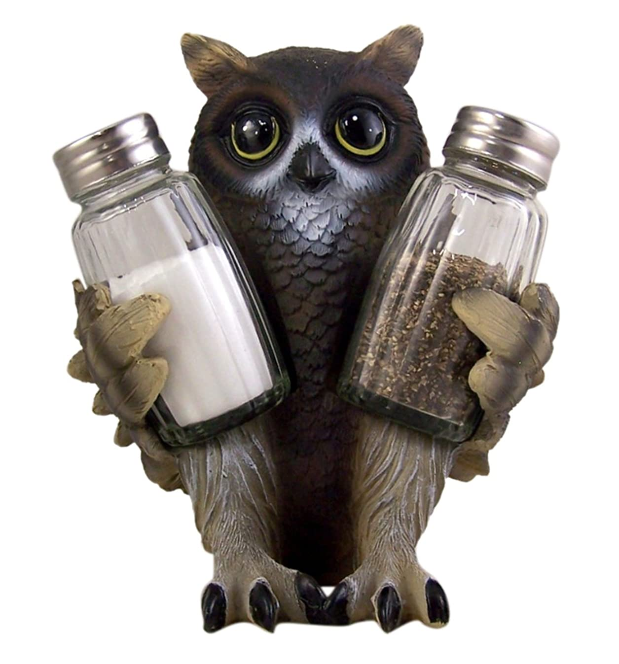 Spice Wisely Owl Salt and Pepper Shaker Holder (Shakers Included)