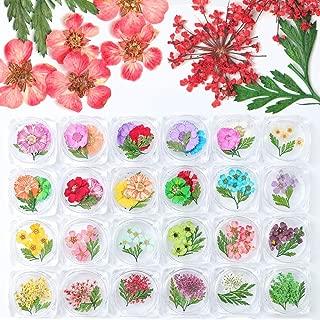 Mejor Nail Polish Flowers de 2020 - Mejor valorados y revisados
