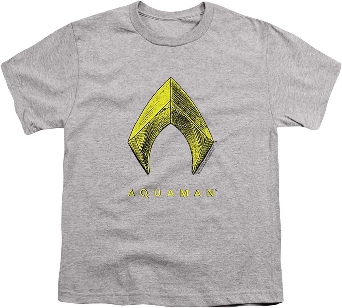 Aquaman Movie Aquaman Logo Unisex Youth T Shirt