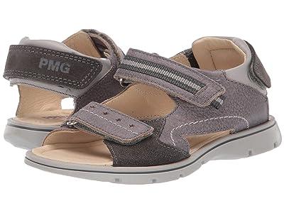 Primigi Kids PFP 34216 (Little Kid) (Grey/Grey) Boy