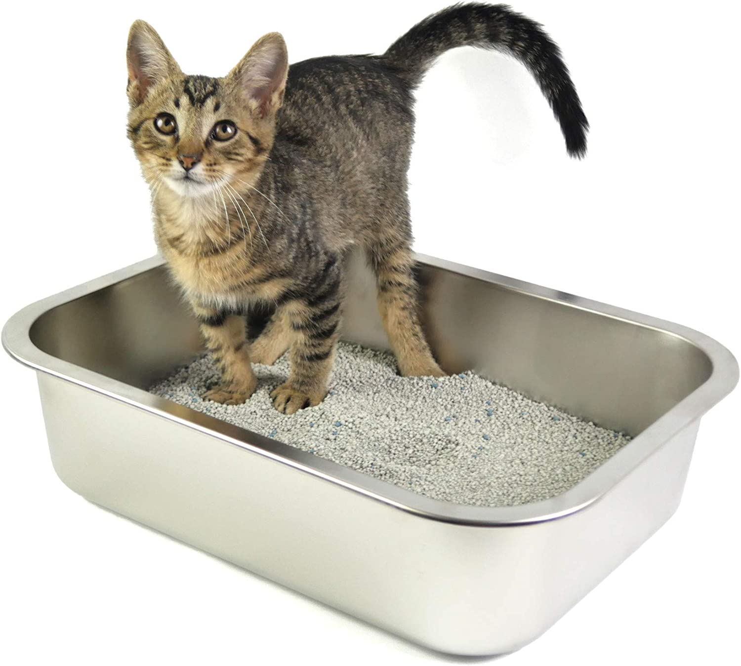 Genuine Free Shipping Small Litter Box for Cat Kitten Lit and At the price of surprise Rabbit Steel Stainless