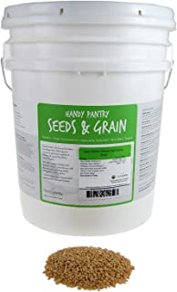 35 Lb Bulk Non-GMO Organic Whole Wheat Kernels - Hard White Wheat Grain & Heirloom Wheat Seeds for Hard White Wheat Berry ...