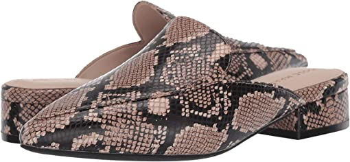 Amphora Exotic Snake Print Leather