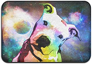 Soft Non-slip Pit Bull Rainbow Series Pop Art Bath Mat Coral Rug Door Mat Entrance Rug Floor Mats For Front Outside Doors ...