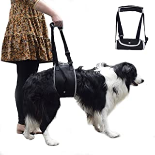 kathson Dog Lift Harness Paralyzed Dog Lifting Support Mobility Rear Harness Adjustable Hip Sling Back Brace for Old, Disabled, Joint Injuries, Arthritis Medium and Large Dogs