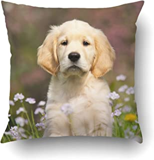 Standard Pillowcase Decorative Black Labrador Retrievers Wedding Dogs with Text Pillow Cases 16x24 Inches