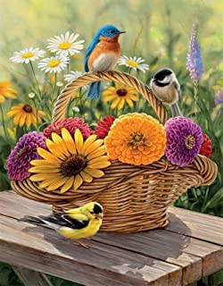 DIY Oil Painting Paint by Number Kit for Kids Adults Beginner 16x20 inch - Small Birds and Big Flowers, Drawing with Brushes Christmas Decor Decorations Gifts (Frame)