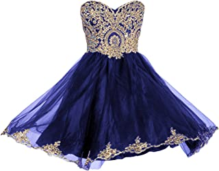 Prom Dresses Short Lace Prom Homecoming Dresses Affordable Beautiful Sparkly Dress