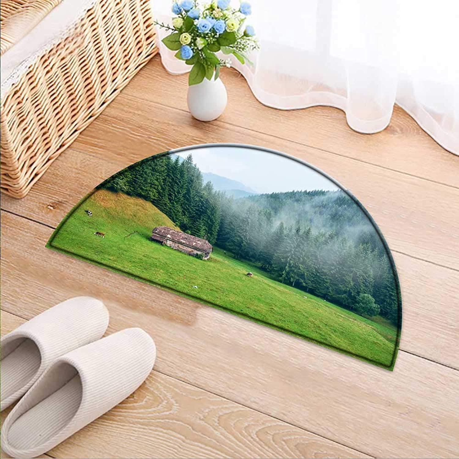 Entrance Hall Carpet The Large Forest and Meadow in The Mist Non Slip Rug W47 x H32 INCH