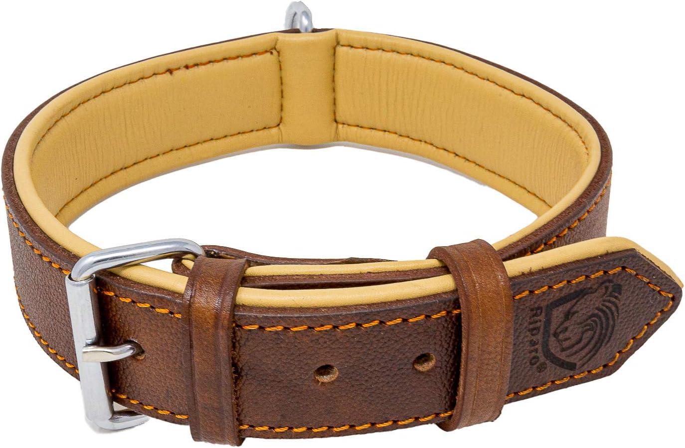 Riparo Collar de perro acolchado de cuero genuino Collar de mascota ajustable K-9 fuerte (XL: 4,5cm de ancho para cuello de 55,9cm - 63,5cm, Marrón)