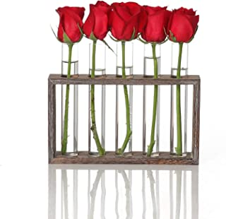 Ivolador Wall Mounted Hanging Planter Test Tube Flower Bud Vase Tabletop Glass Terrariumin Wooden Stand Perfect for Propagating Hydroponic Plants Home Garden Wedding Decoration