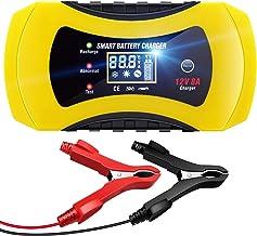 Suchergebnis Auf Für Ladegerät Gel Batterie