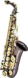 Best antigua winds alto saxophone Reviews