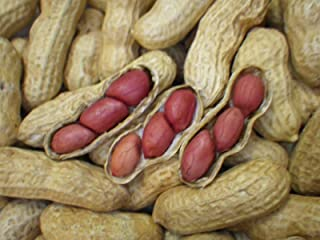 tennessee red peanuts