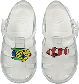 Dolce & Gabbana Kids - Clear Jelly Sandal (Toddler/Little Kid)