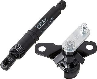 Ford FL3Z-99406A10-A Tailgate Shock Assembly