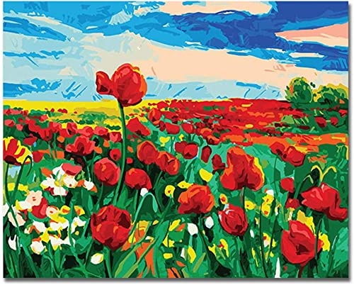 precio al por mayor NGDDXTG rojo Flower Field Pictures by Numbers DIY Digital Painting Painting Painting Sky Wall Canvas Art Coloring by Numbers For Home Artwork  compra limitada