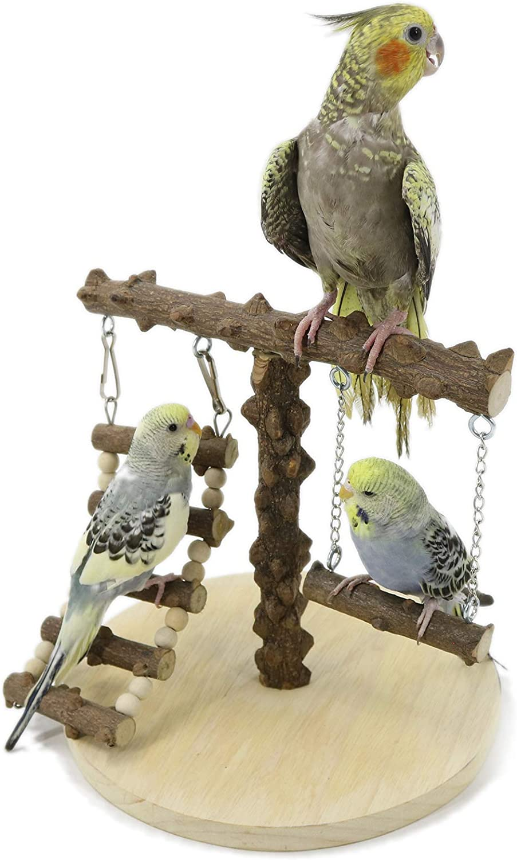 YINGGE Bird Training Rack Parrot Playstand Bird Play Stand Cockatiel Playground Wood : Pet Supplies