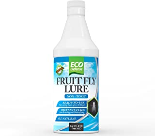Best fruit fly insecticide spray Reviews