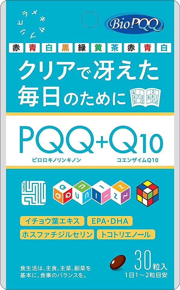 連鎖密輸コロニーPQQ+Q10 30粒
