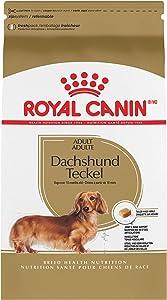 Royal Canin Dog Food for Adult Dachshunds