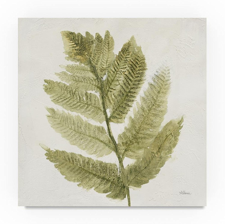 Trademark Fine Art Albena Hristova Forest Ferns I, 14x14-Inch