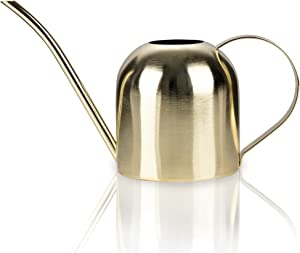 Small Watering Can Bonsai Stainless Steel Plant Water Can for Indoor Office Plants and Garden Brass Long Spout, 33oz/1L(Large Golden)