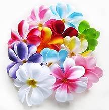 (24) Assorted Hawaiian Plumeria Frangipani Silk Flower Heads - 3