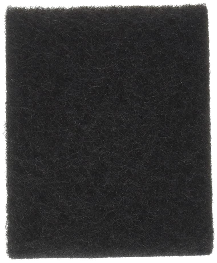 Wagner Spray TECH 2PK 0529019 Flexio 2 Pack Replacement Filter