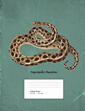 Snake Boa Constrictor Composition Book College Ruled: Notebook 200 pages 100 sheets