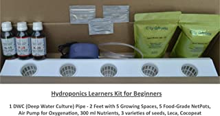 City Greens® DWC Hydroponics Kit for Home - 5 Plants | Best for All Leafy Vegetables | Safe, Simple & Effective Hydroponic System | Netpots Colour - White