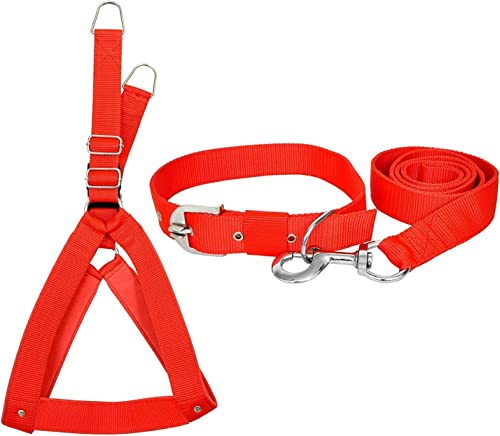VIP COLLECTION Premium Strong Nylon Everyday Dog Collar Leash Buckle Dog Harness Color-Red Medium